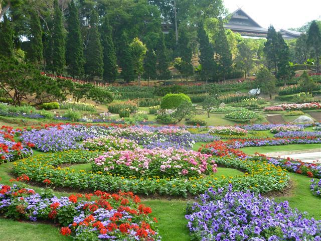 Hoa kiểng tạo nên những cảnh quan tuyệt đẹp