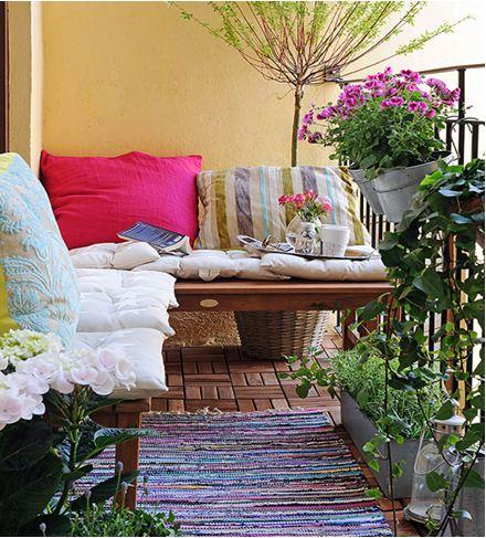 bancong-2 Cây Ánh hồng trang trí hàng rào, cổng nhà