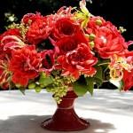ngacngeo-371-150x150 Lily Gloriosa (hoa ngót nghẻo) - sức quyến rũ đầy nguy hiểm