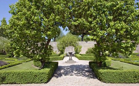 Trồng cây xanh phong thủy