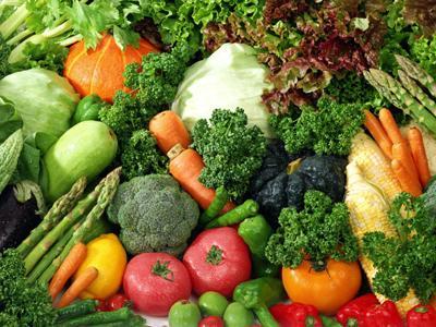 rauantoan2 Các nguyên tắc và cách thực hiện cơ bản trong sản xuất rau hữu cơ – P4
