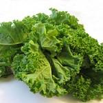 salad-150x150 Trồng cải xà lách an toàn