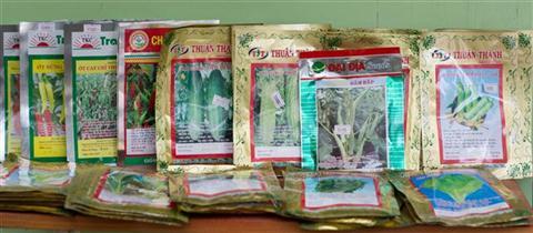 Hạt giống cho người trồng rau trong nhà