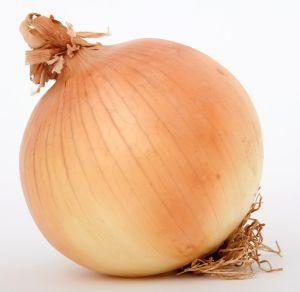 onions Chúng ta biết gì về tác dụng của cây khổ sâm?