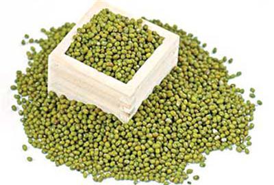 Một trong những nguyên liệu phổ biến để làm giá tại nhà là đậu xanh, sử dụng 1 dụng cụ để địng lượng hạt đậu cho mỗi lần làm giá