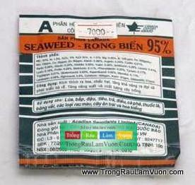 Seaweed Lợi ích của phân bón lá đối với cây trồng