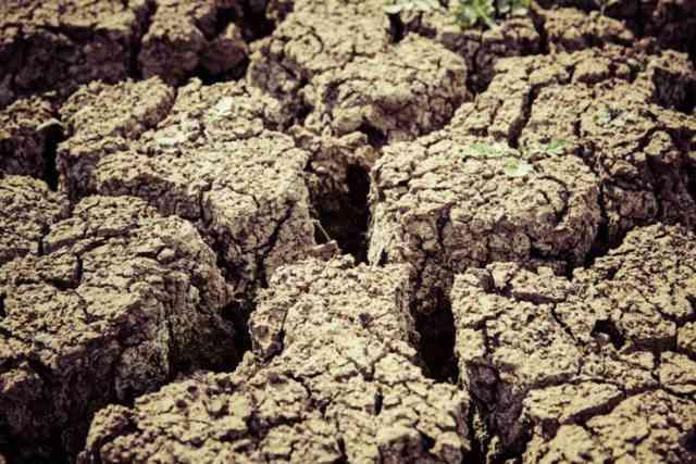Hạn hán là một thách thức điển hình khi Trái Đất ngày một nóng lên