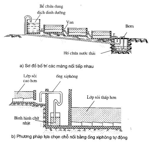 2.10. Hệ thống tưới ngẩm khép kín trồng cây trong sỏi bậc thang